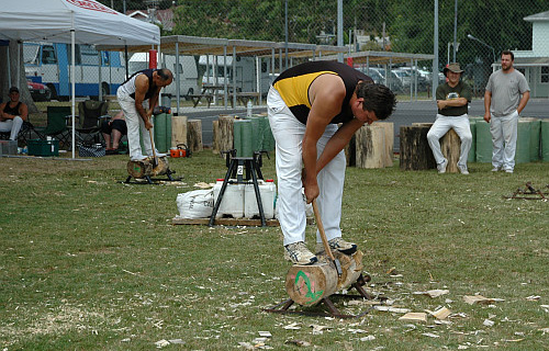 Wood chopping contest Paeroa Highland Games