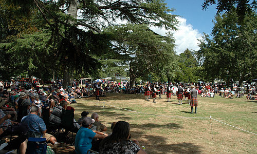 Paeroa Highland Games Pipe bands contest
